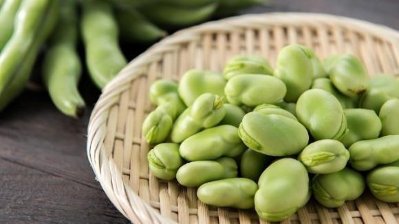 Riduzione dell'impatto ambientale sostituendo la soia con le fave