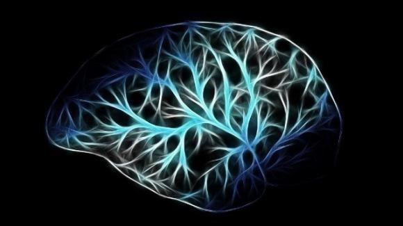 La leishmaniosi protegge dall'Alzheimer