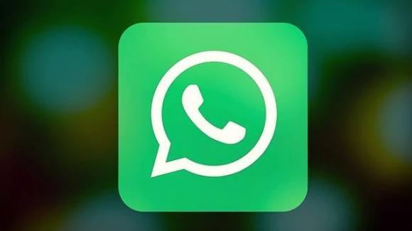 WhatsApp beta iOS: attivo il codice QR per aggiungere i contatti, prossimi i Password Backup