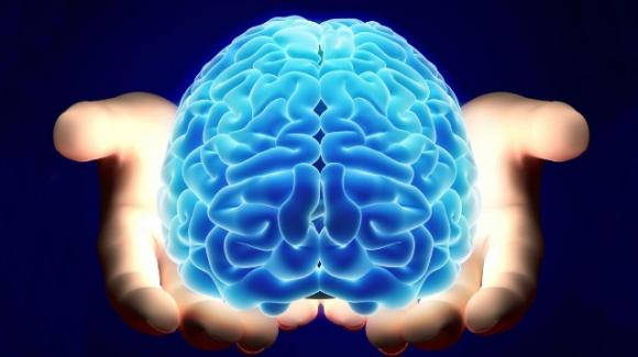 Surgical Theatre, il simulatore 3D per esplorare il cervello