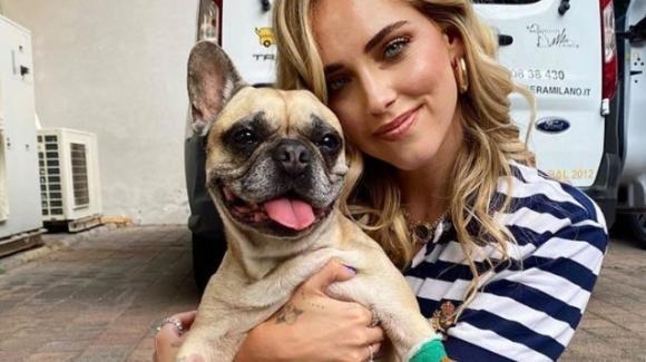 Chiara Ferragni, la sua cagnolina è stata ricoverata a Zurigo