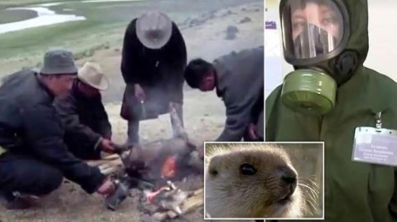Due casi sospetti di peste nera in Mongolia