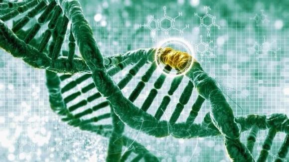 """Tumori, con le mutazioni del """"gene Jolie"""" rischiano anche gli uomini"""