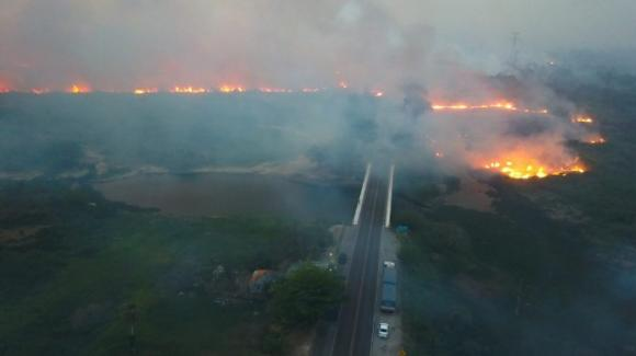 Incendi in Amazzonia: la deforestazione ha raggiunto livelli allarmanti, Bolsonaro incolpa l'Europa