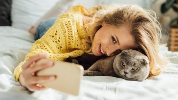 Avere un gatto in casa rende più felici, secondo la scienza