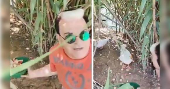Cristiano Malgioglio aggredito dalle oche in vacanza finisce al pronto soccorso