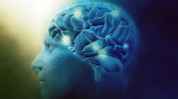 Essere in sovrappeso può pregiudicare le attività del cervello