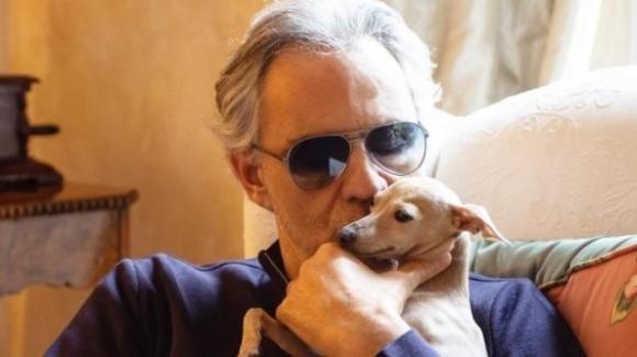 Andrea Bocelli, disperso il suo cane in mare: l'appello sui social