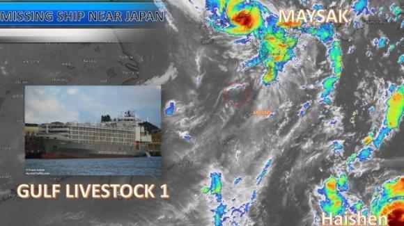 Giappone, il maltempo fa affondare una nave con 6mila mucche: morti 42 marinai