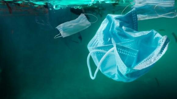 """Allarme inquinamento: """"In mare ci sono più mascherine che meduse"""""""