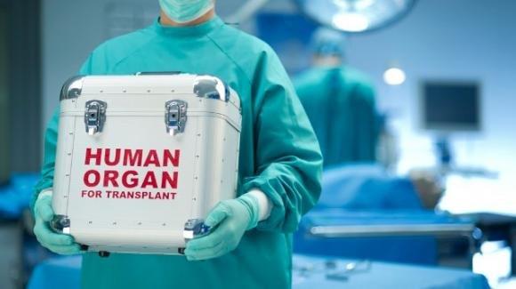 Ismett di Palermo non si ferma: eseguiti 2 trapianti di fegato donato dai figli ai genitori