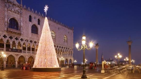 Venezia, 28enne trovato impiccato ad un albero ancora vivo: aveva perso il lavoro il giorno prima