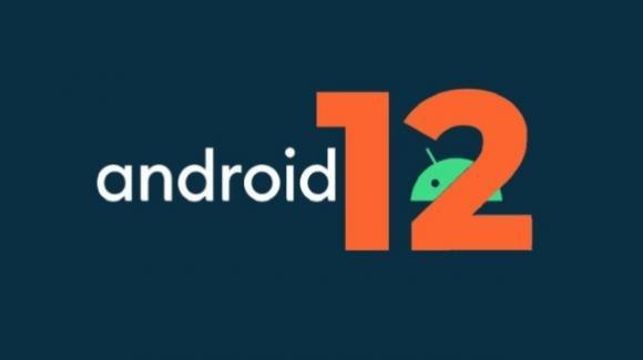 Android 12 Developer Preview 1: ecco come potrebbe essere il nuovo OS di Google