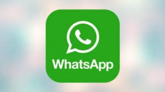 WhatsApp: ufficiali le chiamate audio e video anche da desktop