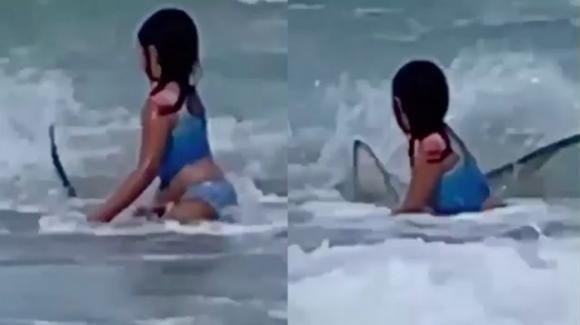 Bimba fugge da uno squalo: la scena ripresa con un cellulare