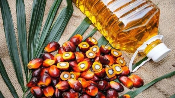 Sri Lanka, bandito l'olio di palma