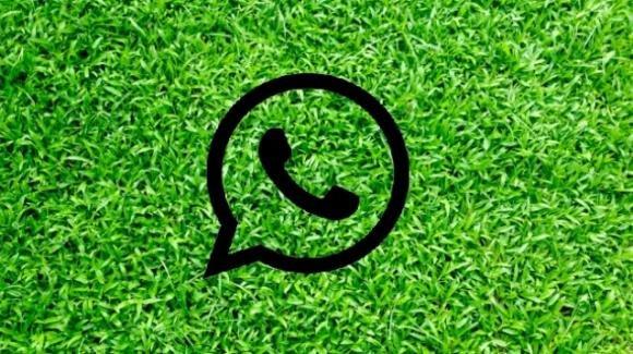 WhatsApp: nuovi rumors sull'autocancellazione dei messaggi