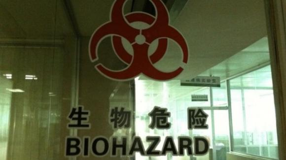"""Covid-19, video SkyNews Australia: """"Pipistrelli vivi nel laboratorio di Wuhan"""""""