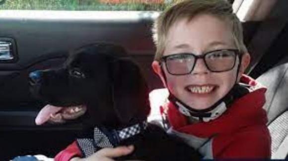 Bimbo di 8 anni vende la sua collezione di carte Pokemon per salvare il suo cane