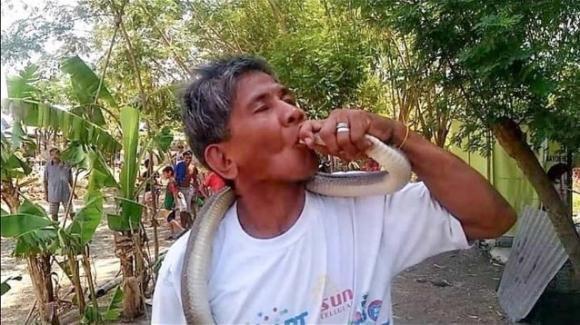 """Filippine: """"Sono immune ai serpenti"""", muore morso da un cobra mentre cerca di baciarlo"""