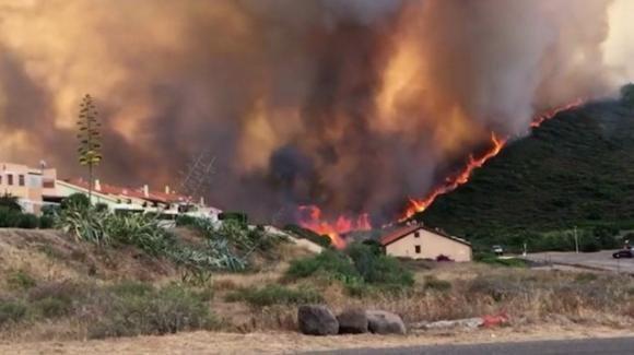A Oristano, in Sardegna incendi devastanti distruggono ettari di terreno
