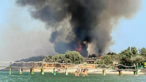 Brindisi, incendio distrugge parte della costa nord: evacuato uno stabilimento balneare