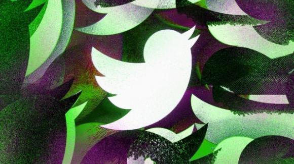 Twitter: piccola rivoluzione per il canarino azzurro, tra roll-out e rumors