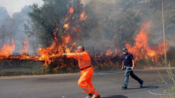 Le fiamme minacciano il suo podere: 77enne muore per salvare i suoi animali