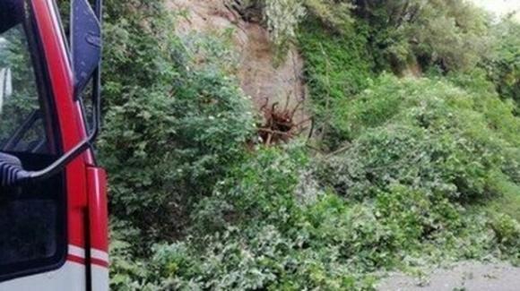 Tragedia a Bolzano: agricoltore 43enne muore travolto da una colata di fango