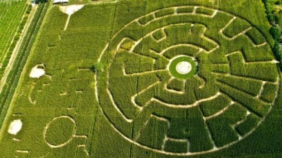 Labirinto Effimero Dinamico: Alfonsine è sede di una particolarissima opera costruita in mezzo alle pannocchie
