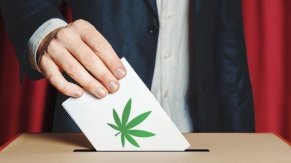 Cannabis: boom di firme nella prima giornata, sono già oltre 100mila le adesioni