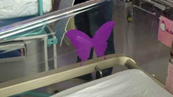 Una farfalla viola sulla culla: il toccante significato di questo gesto