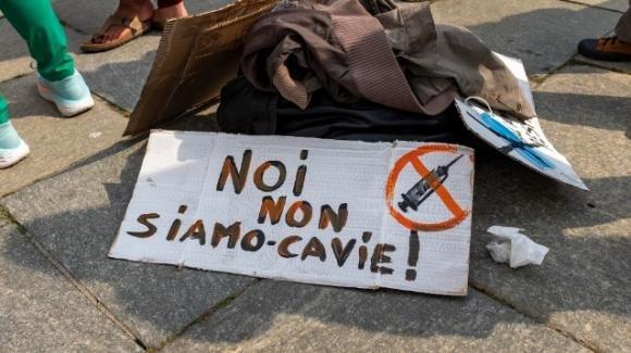 """Vicenza, """"Costretta a vaccinarmi"""": medici si rifiutano di iniettarle il siero"""