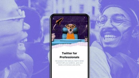 Twitter: al varo la piattaforma Twitter for Professionals