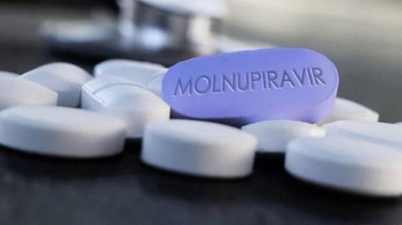 """Molnupiravir, il farmaco anti-Covid: """"La pillola riduce del 50% i ricoveri e i decessi"""""""