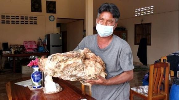 Thailandia, trova vomito di balena in mare e diventa milionario