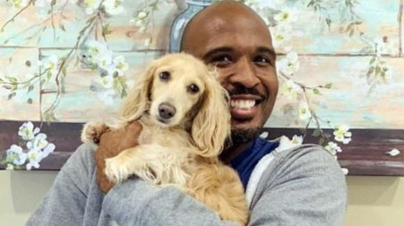 USA, veterinario abusava dei cagnolini che aveva in cura: arrestato