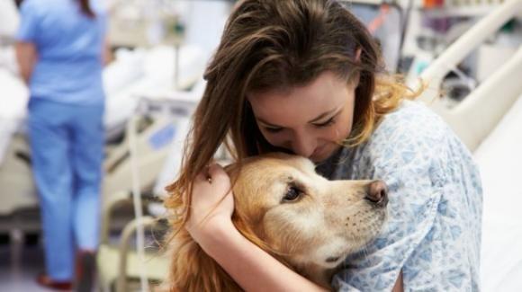 Animali e buonumore, i migliori antidepressivi