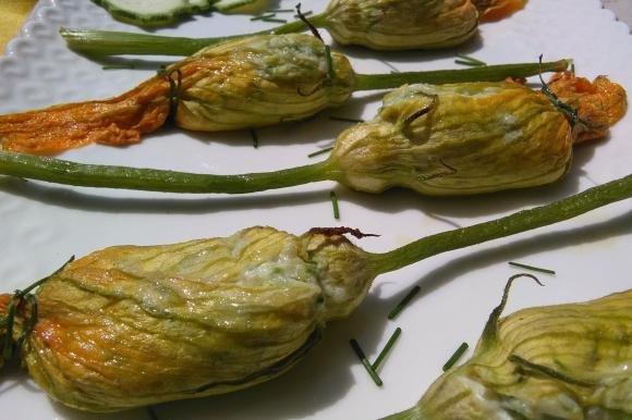 Fiori di zucca ripieni di ricotta e zucchine