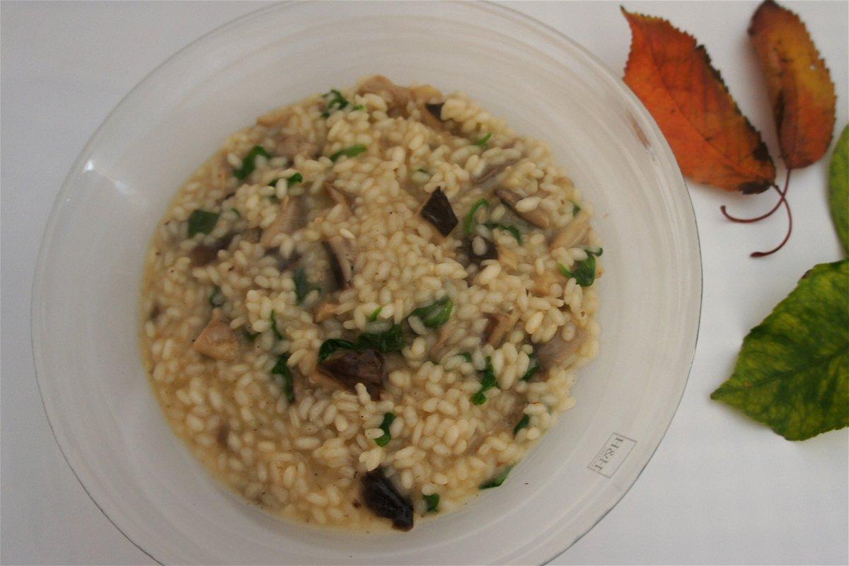 Ricetta Risotto Funghi E Rucola.Risotto Con Funghi E Rucola Fidelity Cucina