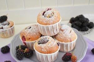 Muffin con more e yogurt
