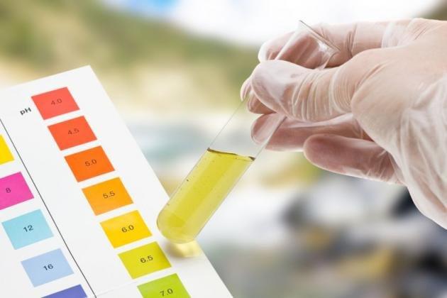 Leucociti nelle urine: cause, valori normali e quando preoccuparsi