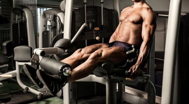 Leg extension: cos'è, come si esegue e quali sono i muscoli coinvolti