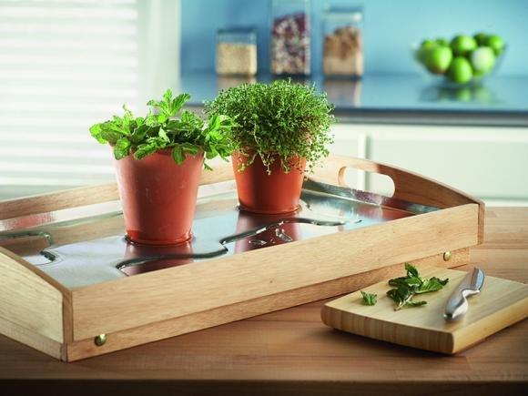 Come creare un piccolo orto in casa