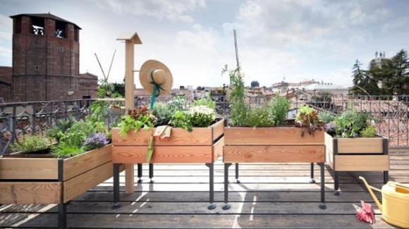 Il segreto per un giardino perfetto, anche in piccoli spazi