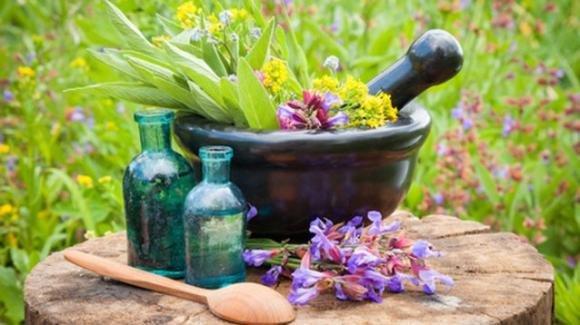 Rimedi naturali: programma detox per ritrovare la forma fisica