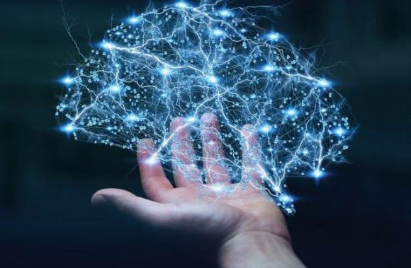 Questi fatti sul cervello dimostrano che siamo in grado di..