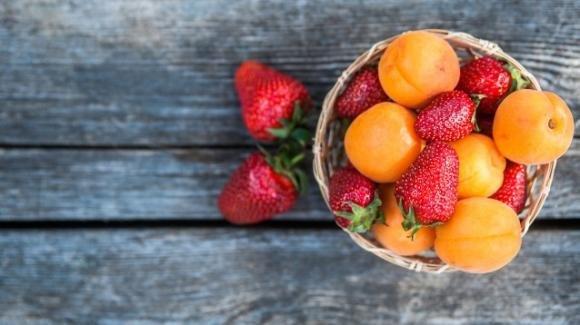 Dieta di Giugno: come perdere peso in soli 10 giorni