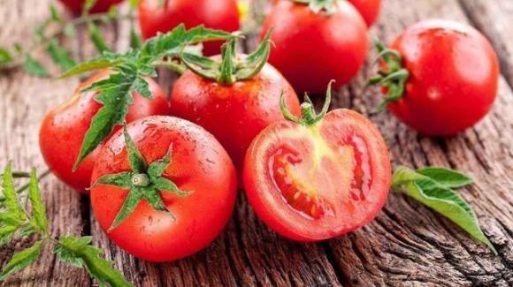 Dieta detox del pomodoro: come perdere peso, sgonfiarsi e depurarsi in pochi giorni