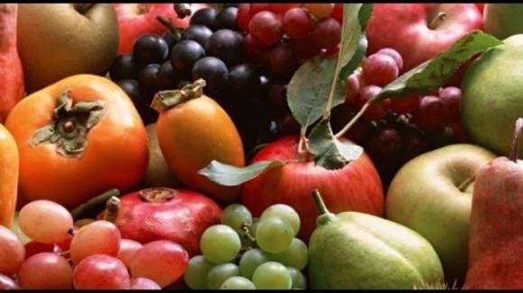 Settembre: frutta e verdura di stagione da mettere nel carrello